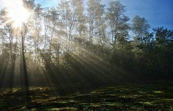 Vreme calda si disconfort termic ridicat, pana duminica seara. Cod galben de ploi si furtuni, in Moldova, Muntenia si local in Dobrogea