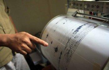 Alerta de tsunami in Noua Zeelanda dupa un cutremur de 7,4 grade inregistrat duminica dimineata