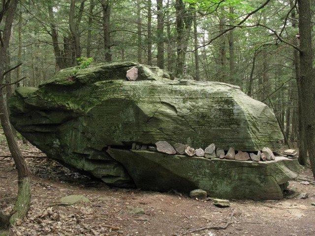 Aventura, natura si mister: 15+ cele mai ciudate lucruri gasite de oameni in padure