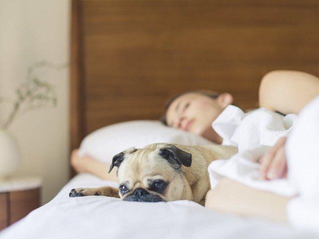 10 trucuri pe care sa le pui in aplicare pentru a reusi sa te odihnesti pe canicula
