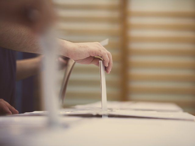 A fost adoptata legea privind votul in diaspora