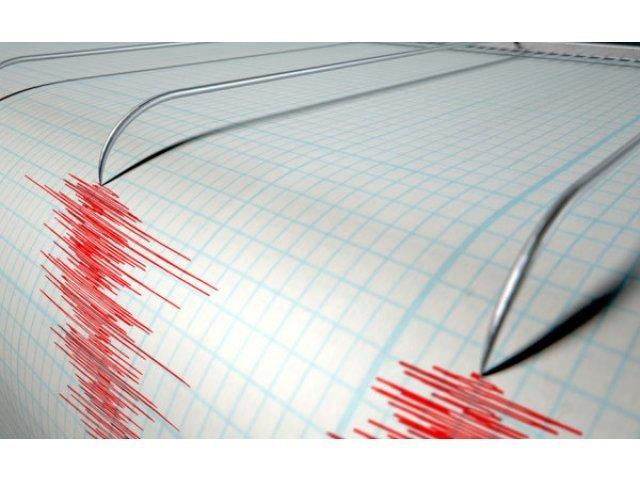 Cutremur cu magnitudinea 3,5 in judetul Vrancea
