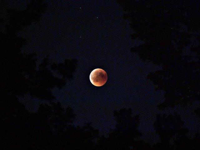 Eclipsa partiala de Luna, vizibila in Romania in noaptea de marti spre miercuri