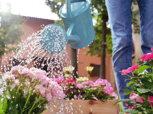 15+ curiozitati despre apa. Cata apa folosesti la un dus de 5 minute?