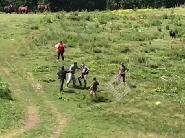 Un belgian a fost batut de mai multi ciobani, pe motiv ca le-ar fi speriat caii/ VIDEO