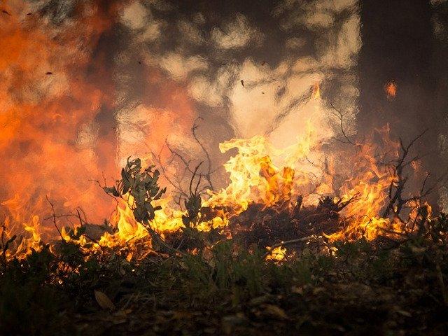 Incendii de vegetatie in Insula spaniola Gran Canaria