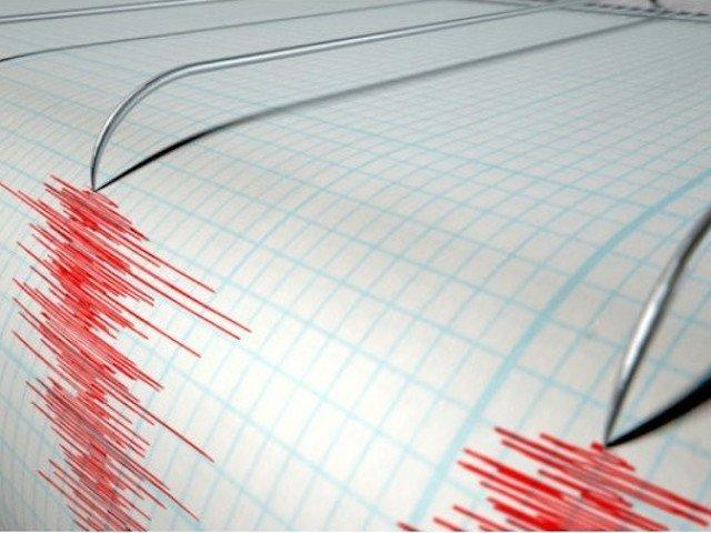 Cutremur de 4 grade pe scara Richter in Vrancea