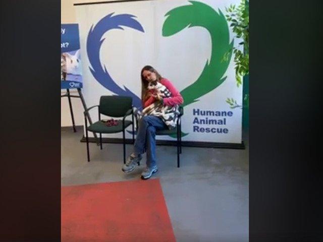 O catelusa disparuta de acasa la varsta de 2 ani, gasita de stapana dupa 12 ani/ VIDEO