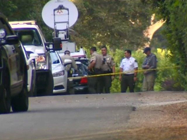 Sotia celebrului actor Ron Ely a fost ucisa de propriul fiu