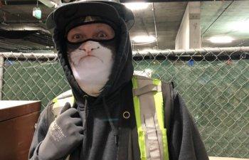 Cand nimic nu te mai surprinde la locul de munca: 10+ fotografii care arata ca job-urile pot fi si distractive