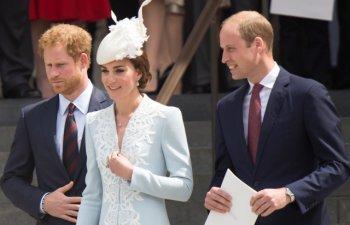 Printul Harry: Imi voi proteja familia, dar eu si William, cu siguranta, suntem pe