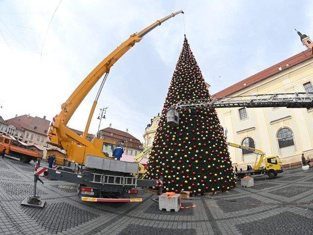 Primaria Sibiu a amplasat in Piata Mare un brad de Craciun, artificial, care a costat peste 600.000 de lei