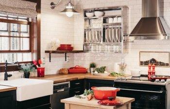 8 metode eficiente care te pot scapa definitiv de gandacii din bucatarie