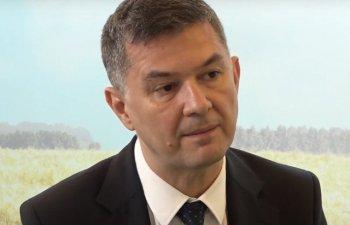 Steriu (PSD): Dorim foarte mult ca presedintele Iohannis sa vina la cel putin o dezbatere. Avem nevoie de un adversar
