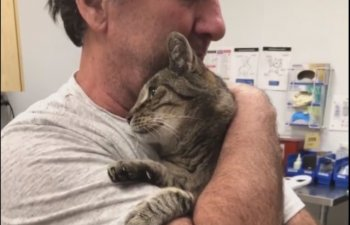 Reuniune emotionanta: un barbat si-a gasit pisica pierduta in urma cu 7 ani / VIDEO