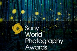 Fotografiile castigatoare de la Sony World Photography Awards 2017