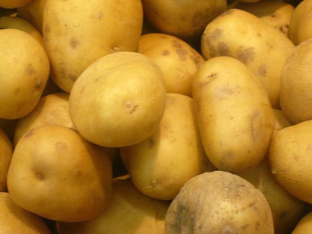 Primii cartofi au fost...