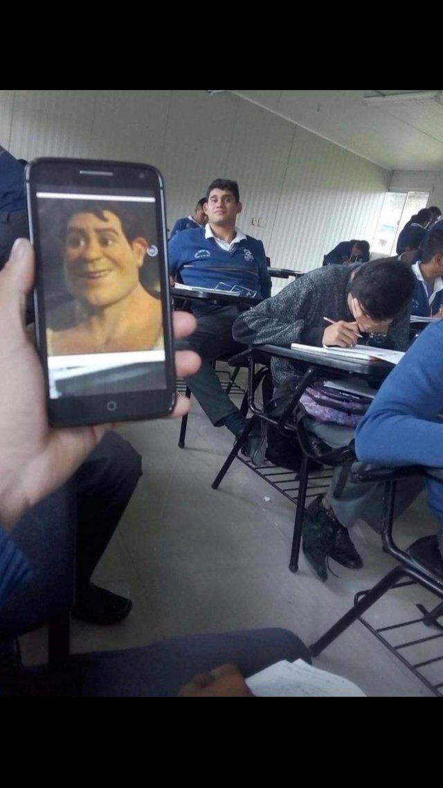 Shrek si-a gasit sosia